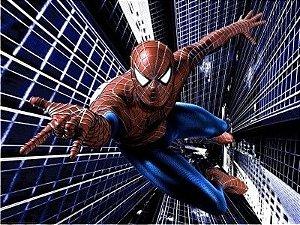 Homem Aranha 11
