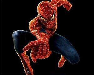 Homem Aranha 12