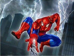 Homem Aranha 13