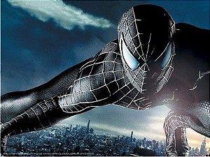 Homem Aranha 15