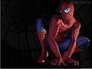 Homem Aranha 16