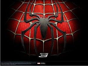 Homem Aranha 17