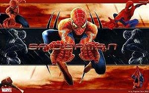 Homem Aranha 24