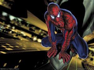 Homem Aranha 25