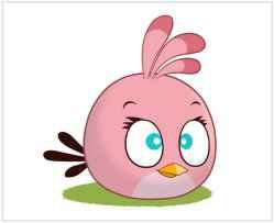 Angry Birds 08 - Display