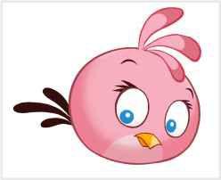 Angry Birds 11 - Display