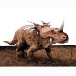 Dinossauros 05 - Display