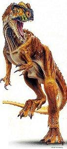 Dinossauros 08 - Display