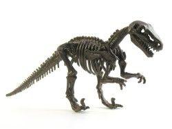 Dinossauros 13 - Display