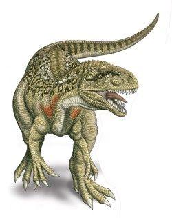 Dinossauros 14 - Display