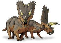 Dinossauros 16 - Display
