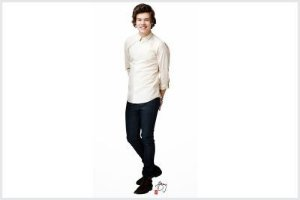 One Direction 07 - Display
