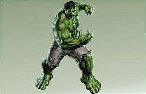 Hulk 24