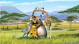 Madagascar 07
