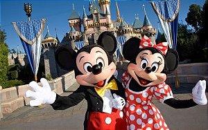 Mickey e Minnie 04