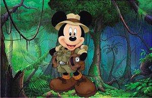Mickey Safari 08