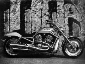 Motos 04