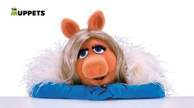 Os Muppets 16