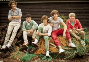 One Direction 06