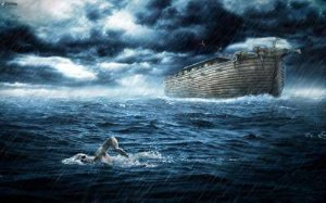 Arca de noé 15