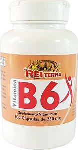 Vitamina B6 250 mg 100 cáps - Rei Terra