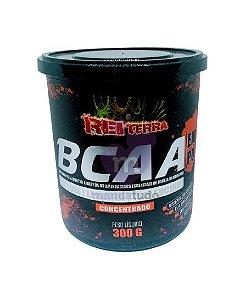 BCAA em Pó Concentrado 300 g - Rei Terra