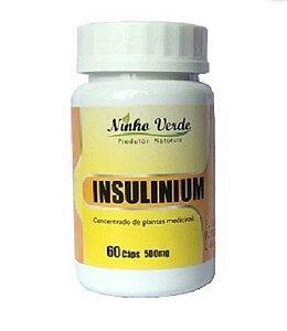 Insulinium 500 mg 60 caps - Ninho Verde