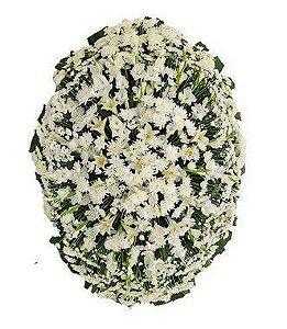 Coroa de Flores Brasilia 7   Faixa de Homenagem Grátis