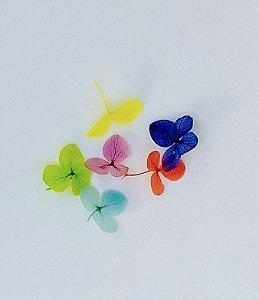 flor desidratada para encapsulamento de unha