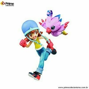 [ENCOMENDA] Takenouchi Sora e Piyomon Digimon Adventure G.E.M. Megahouse original