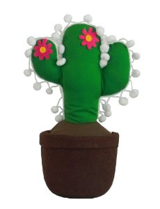 Peso de Porta Cactus