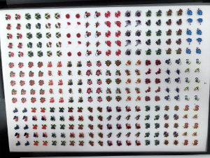 Cartelão com 30 Cartelas- Cód.07 - Semi Acabado