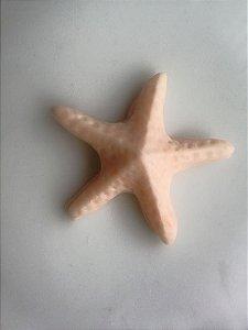 Bala de coco de estrela do mar