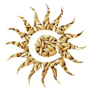 Alpiste - sementes - 500g