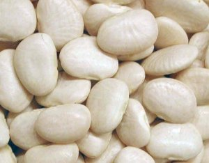 Fava Branca - Pacote 1\2 Kilo
