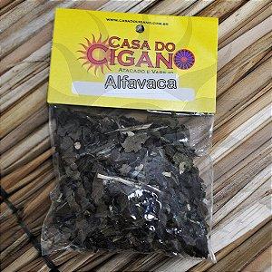 Erva - Alfavaca