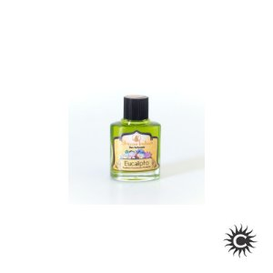 Essência - Shivas Indian - 9ml - Eucalipto