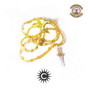 Guia - Amarela de Erê