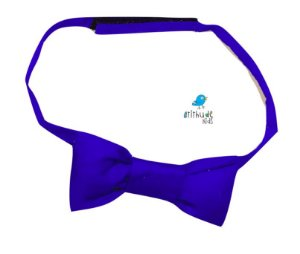 Gravata Borboleta - Azul Royal