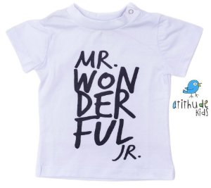 Camiseta - Mr. Wonderful Jr.