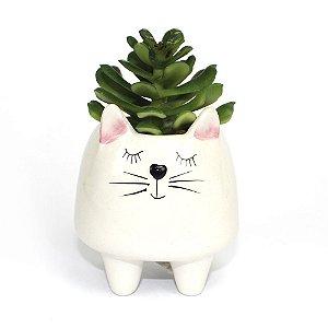 Cachepot Gato com Suculenta Artificial