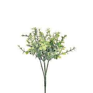 Pick de Mini Eucalipto 22 cm