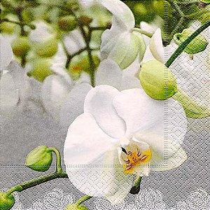 Guardanapo Orchid Festival - Paper Design