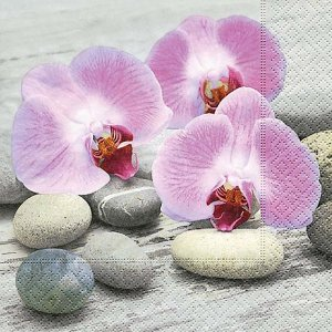 Guardanapo Orchids on Stones - Paper Design