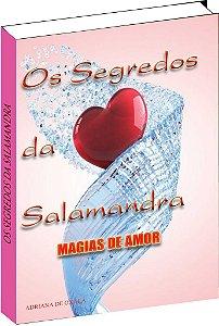 Livro Os segredos da Salamandra