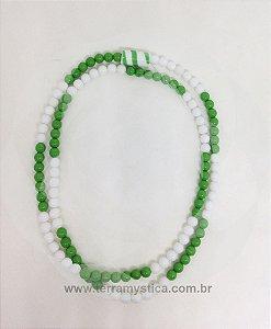 GUIA ESPECIAL RIO - BRANCO E VERDE
