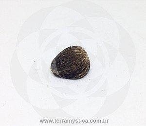 CAROÇO DENDE