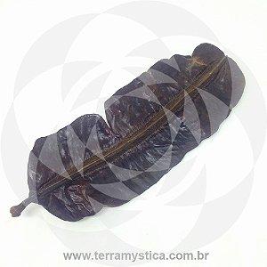 FAVA DE ARIDA - GRANDE