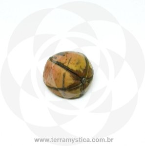 SEMENTE OBI - Africano