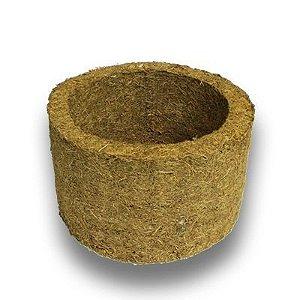 3 Unidades de Xaxim de Palmeira - Tamanho Médio